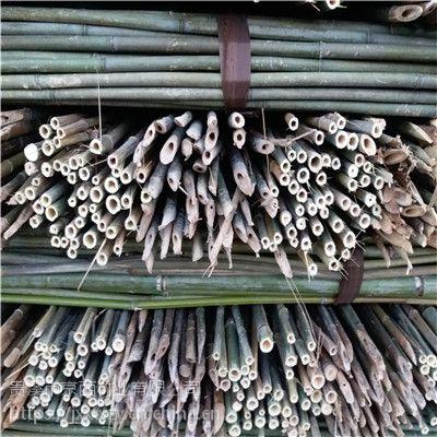 大量批发内蒙古呼和浩特、乌兰察布用的2.5米菜架竹竿(图)