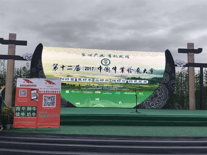 http://himg.china.cn/0/5_118_1063313_800_600.jpg