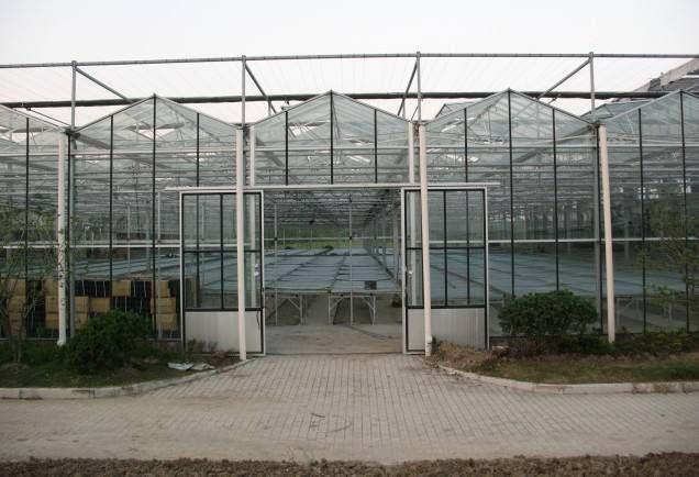 青州鑫泽农业科技有限公司