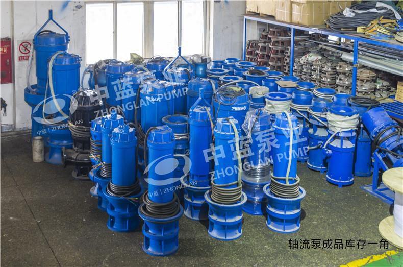 山东客户订购全不锈钢潜水轴流泵 (国内少有)