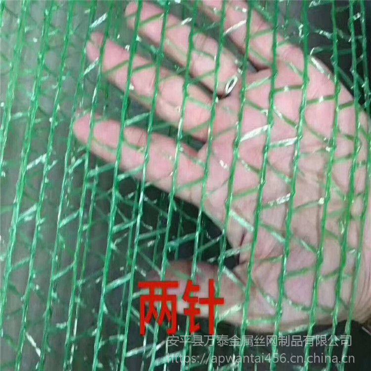 2针盖土网生产 优质防尘网 现货塑料防尘网