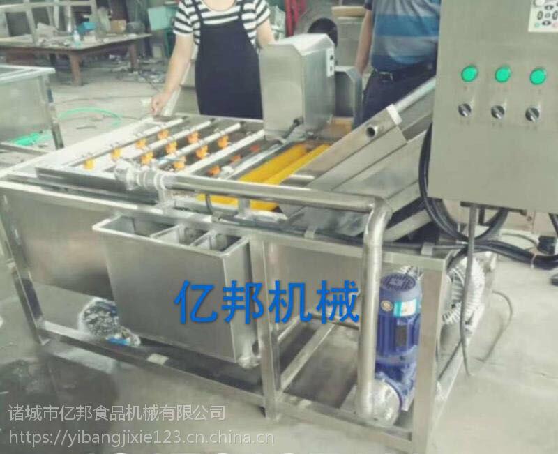 厂家直销亿邦牌气泡清洗机,蔬菜清洗机,大枣清洗机