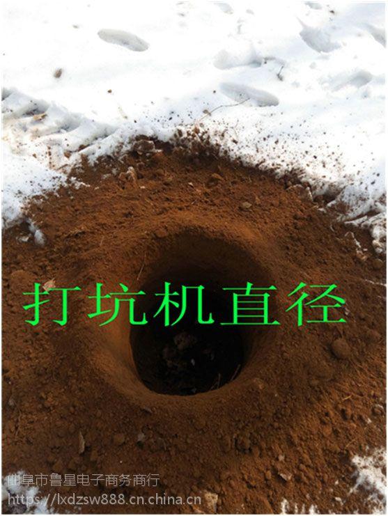 东营农业种树地钻挖坑机 植树挖坑机现货