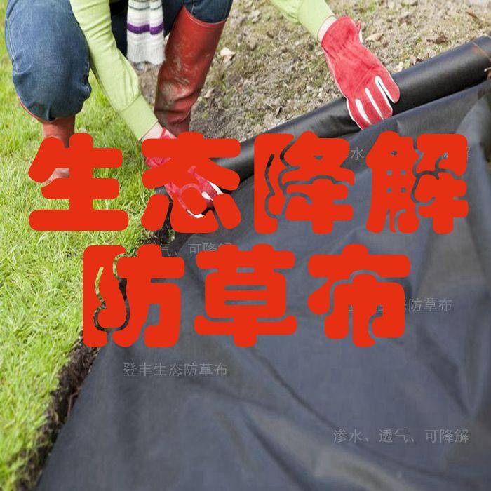 现代农业与登丰惠农生态除草地布