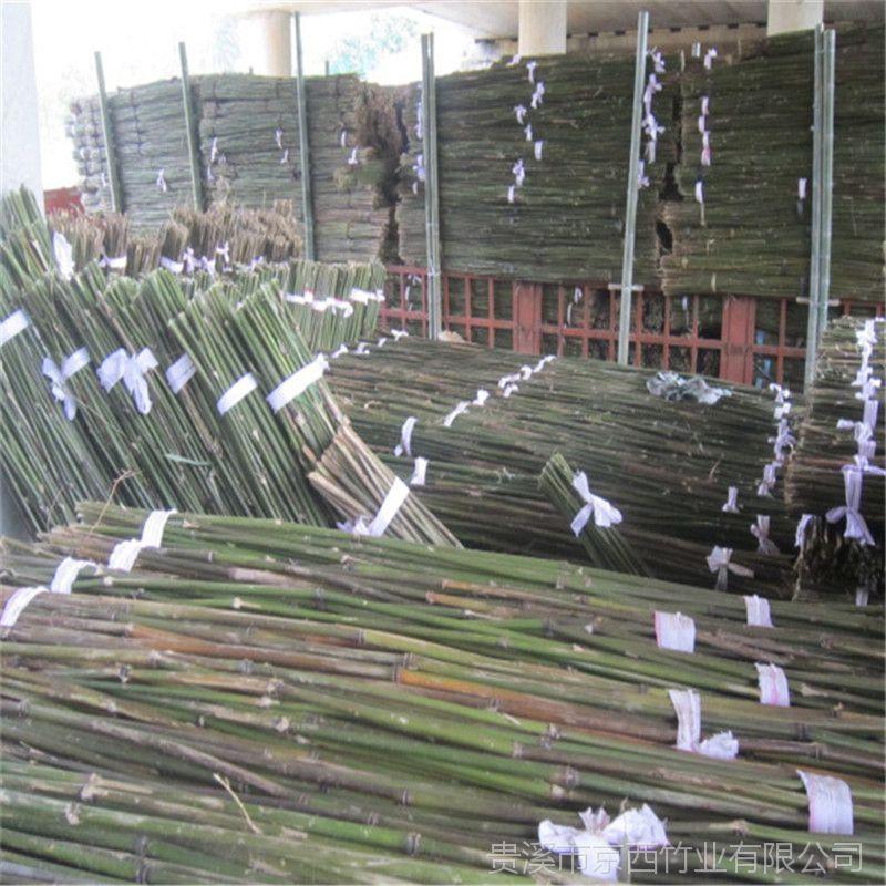 大量批发2.5米、3米山药架竿 江西发货