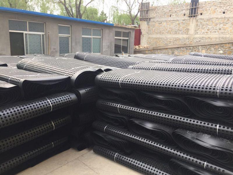 滁州3公分渗排水网垫(经销商)欢迎您