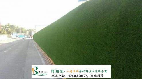 草坪护栏围墙(案例:南川、临海)