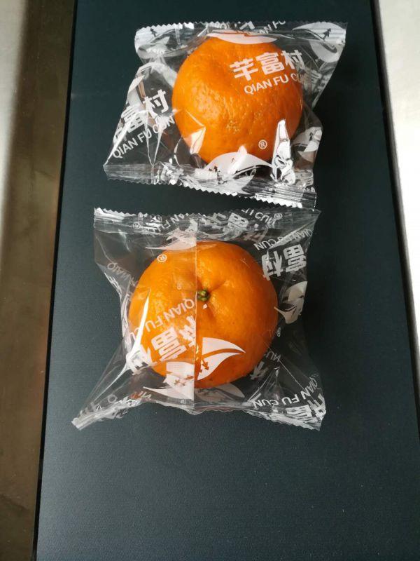 宜昌柑橘包装机新科力包装机械厂