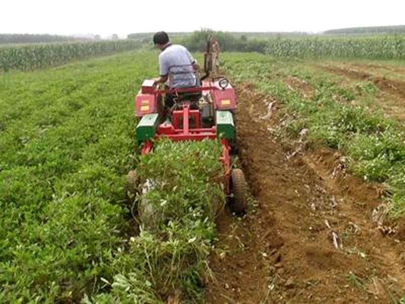疯狂快速花生收获机拖拉机带动花生挖掘机土豆地瓜收获机