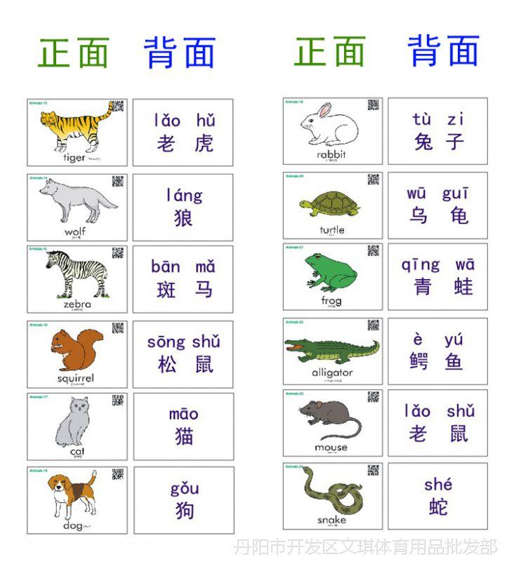 Animals幼儿教师英语单词闪卡汉字拼音卡片双