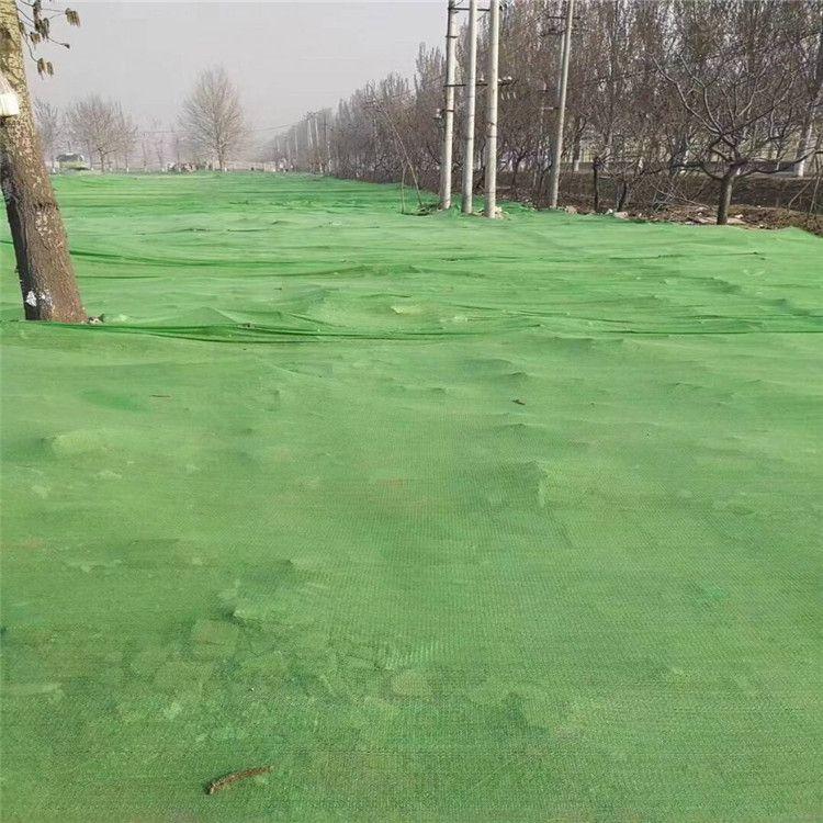 1.5-6针盖土网现货 建筑工地裸土遮盖网 防尘绿网厂家