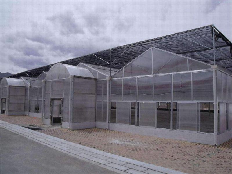 兴庆区三层阳光板规格