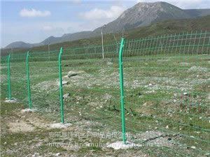 牧场绿色铁网围栏@呼伦贝尔牧场绿色铁网围栏@牧场绿色铁网围栏