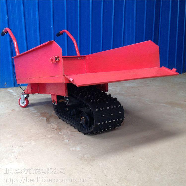 坑洼涉水路段履带车 配带优质配件独轮车 奔力YT-LDC