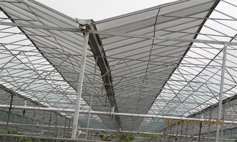 义马市三层阳光板厂家
