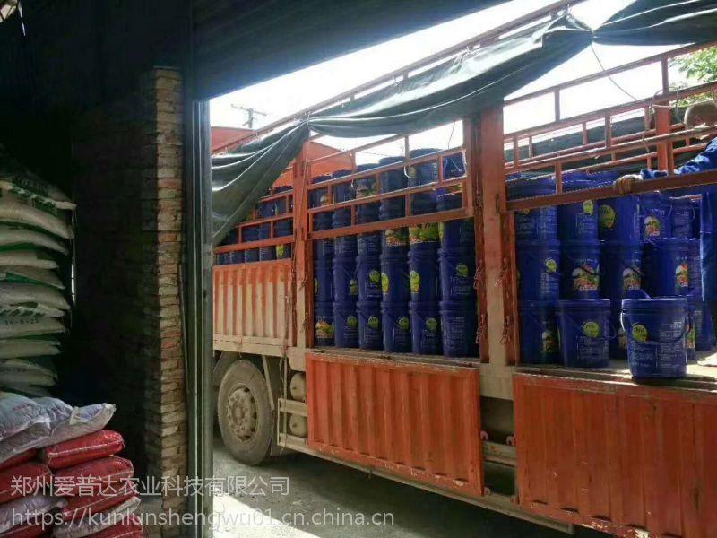抗重茬菌肥厂家供应蔬菜果树生根膨果菌肥