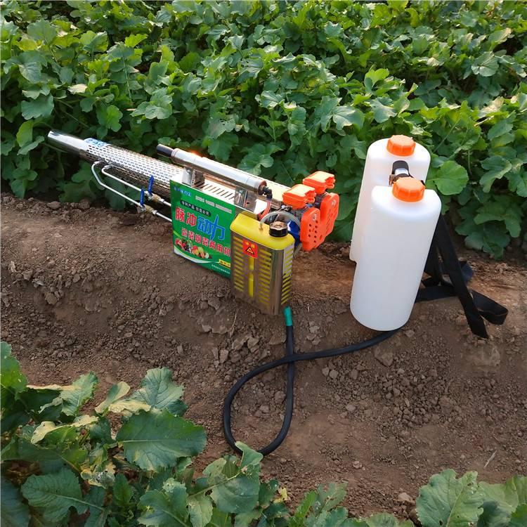 园林除草喷药烟雾机 麦田专用水雾烟雾两用机