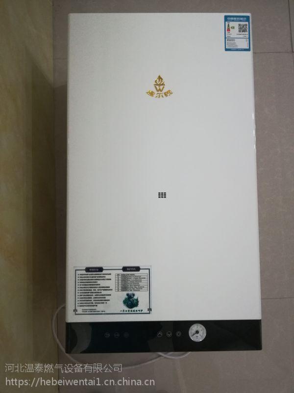 温泰天然气壁挂炉 L1PB20(24/28/32/40)-T1