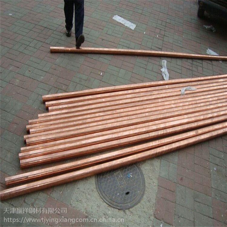 铜棒 批发加工 T2紫铜棒 定尺 C1100铜棒 铜棒加工