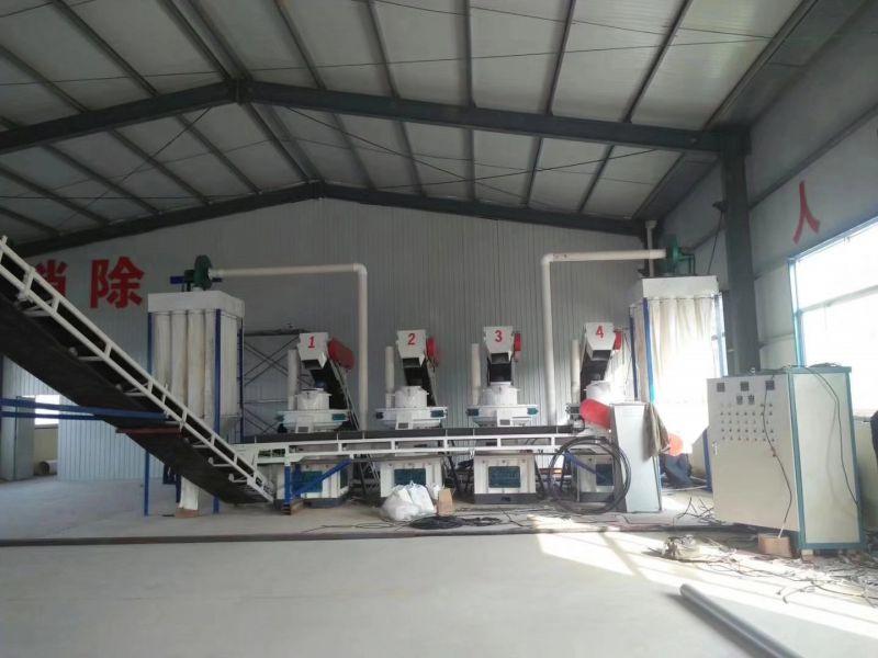 贵州时产10吨木屑颗粒机生产线