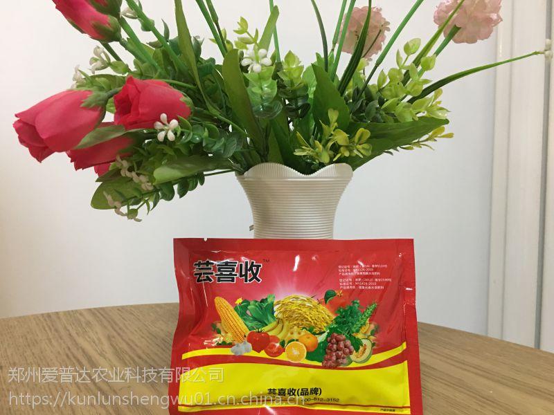 作物高产水溶肥料厂家 提高黄瓜结实率 每茬多收200斤