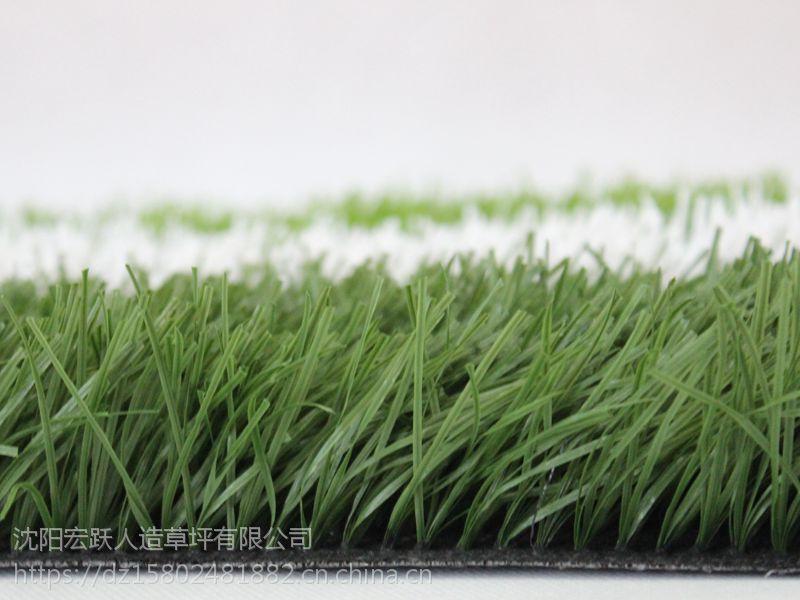 大连宏跃人造草坪 单丝加筋 (旦数8800D)防滑耐磨 质保5-8年