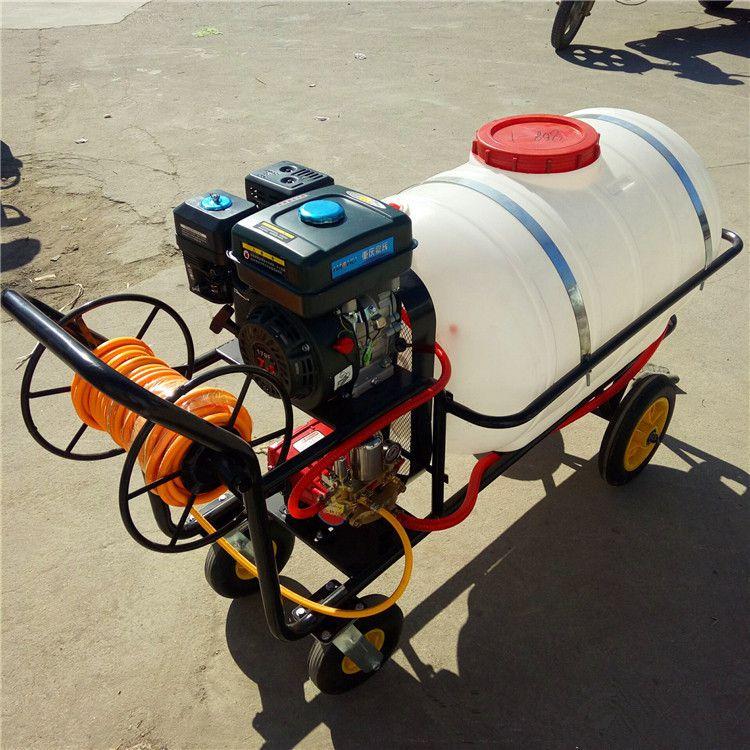 移动手推式汽油高压打药机 果树喷雾器 宏程打药机价格