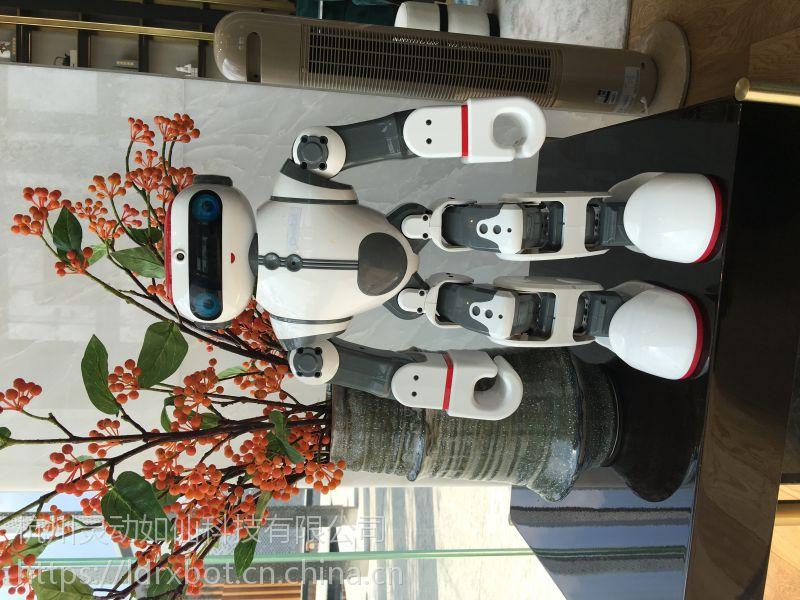 杭州智能机器人租赁方案报价