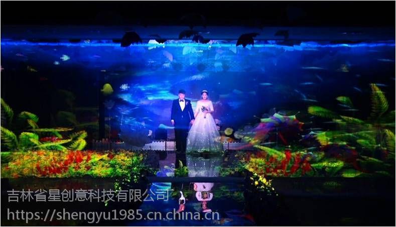 吉林省全息婚礼