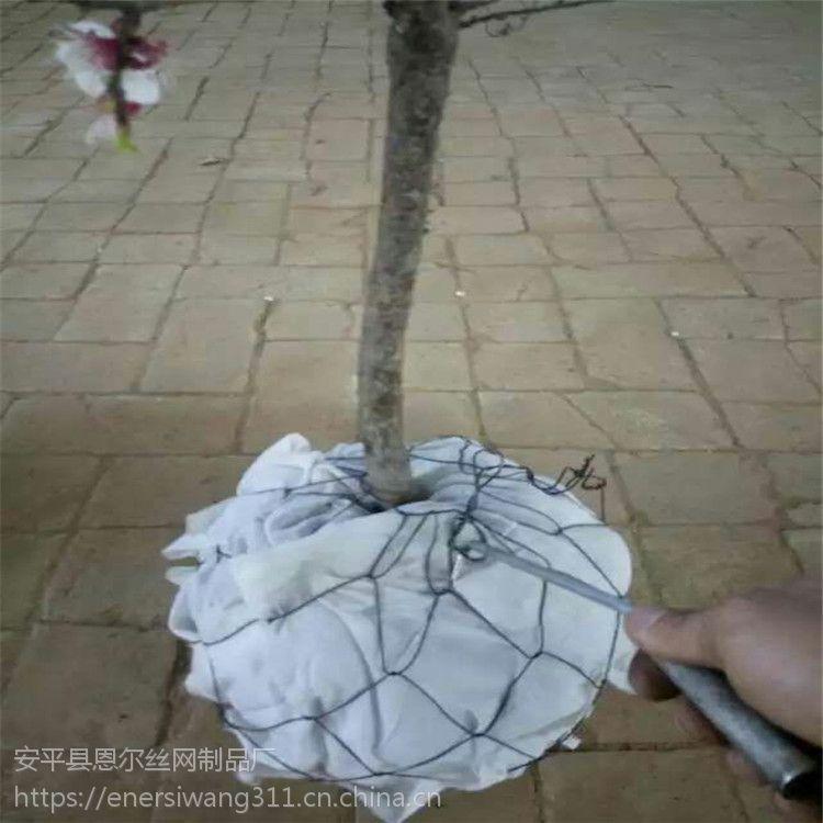 六角勾花镀锌树根网@苗木移植网,金属铁丝网
