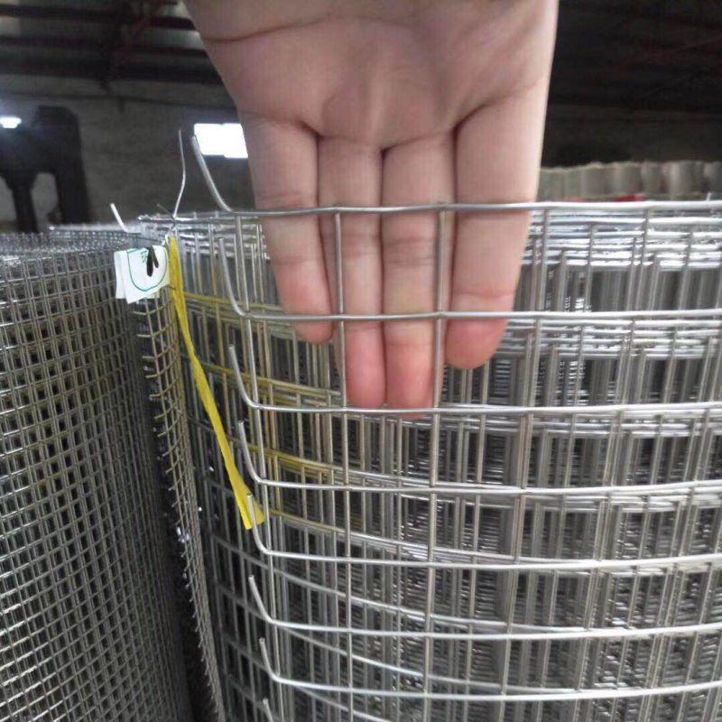 高禄电焊网/不锈钢电焊网/不锈钢碰焊网/钢丝电焊网厂家直销