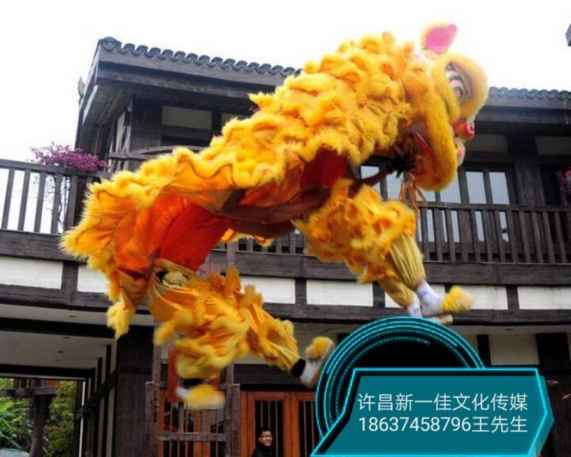 许昌舞狮子,鹦鹉,美人鱼,舞台出租