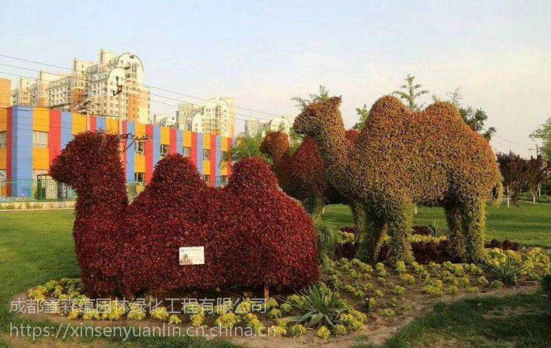 大量定制出售真植物运动造型 景观雕塑 龟兔赛跑主题