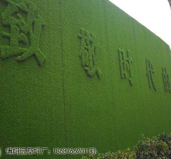 太和县大渡口施工草坪围挡~厂家欢迎您