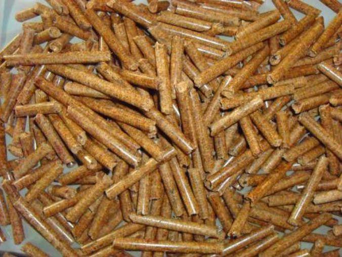 广西桉木木屑颗粒机生产视频