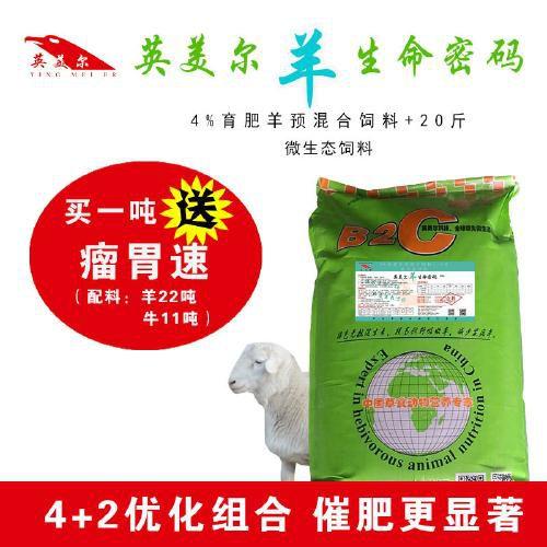 http://himg.china.cn/0/5_500_1038069_500_500.jpg