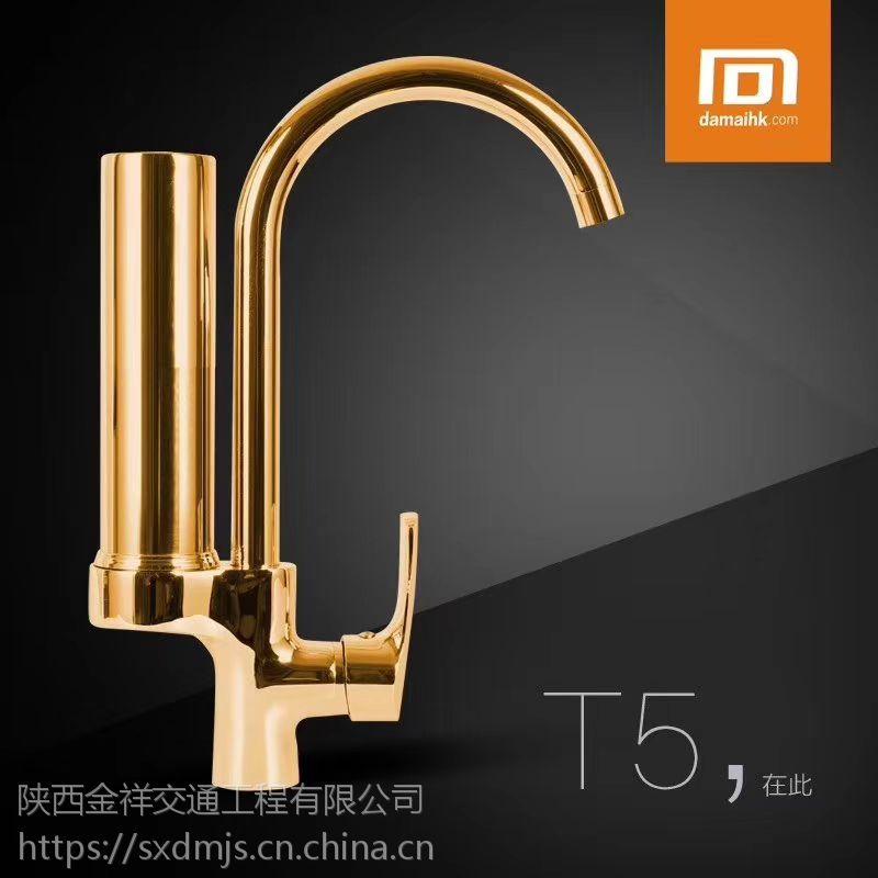 大迈净化水龙头 净水器龙头 除垢除氯气 大颗粒杂质DM-T5