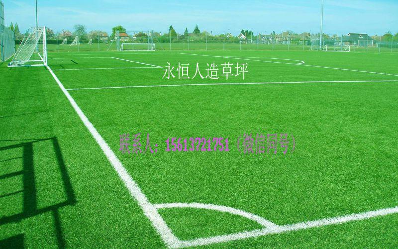 足球场施工,运动场地铺设