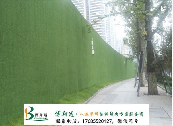 施工围墙绿草坪价格多少钱