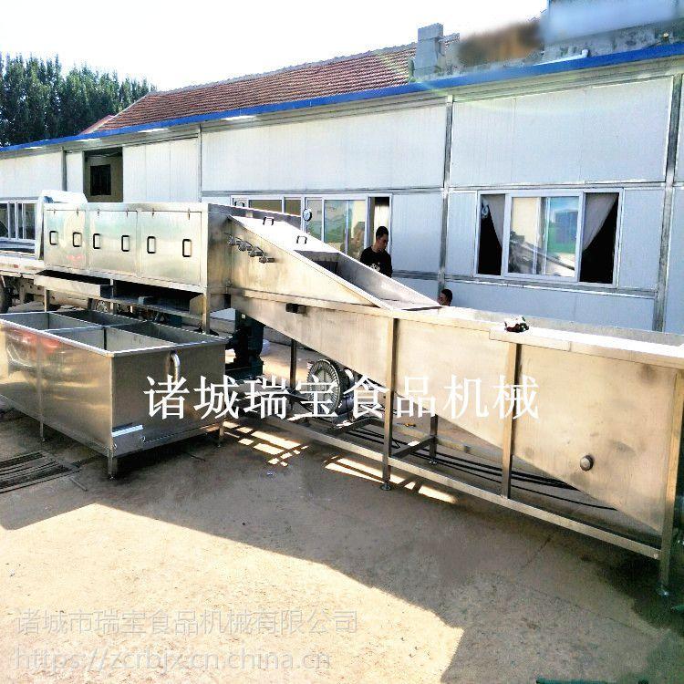 瑞宝XJ-6000型洗姜机 鲜姜清洗设备