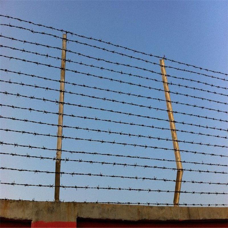 镀锌铁蒺藜 新型防护刺线 圈农场刺线