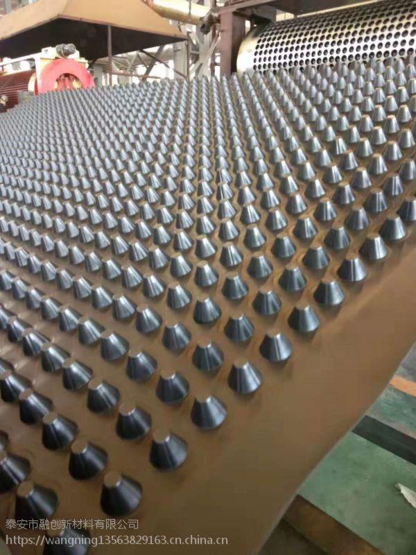 厂家直销 批发塑料排水板 绿化用排水板 车库滤水板H8-60mm质量好 价格优