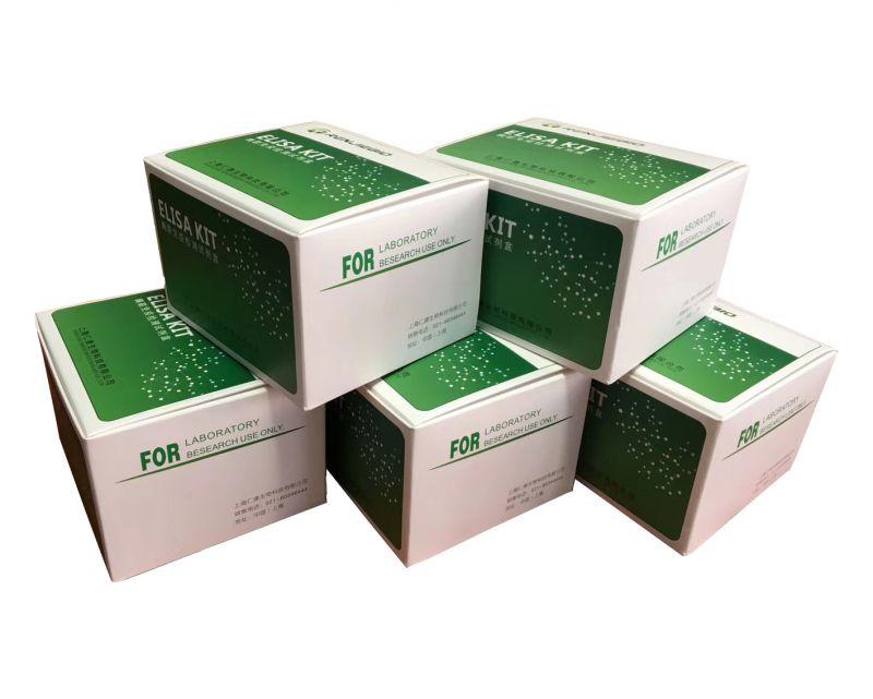 厦门大学推荐仁捷生物羟基胶原吡啶交联试剂盒