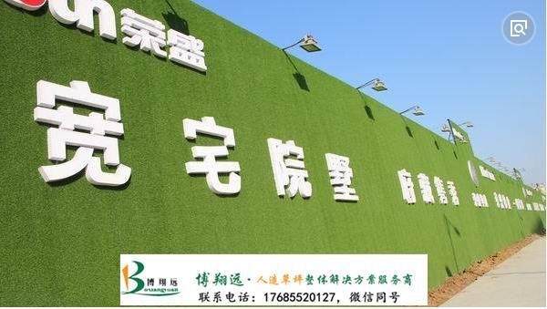 围墙绿化草皮耐用抗老化