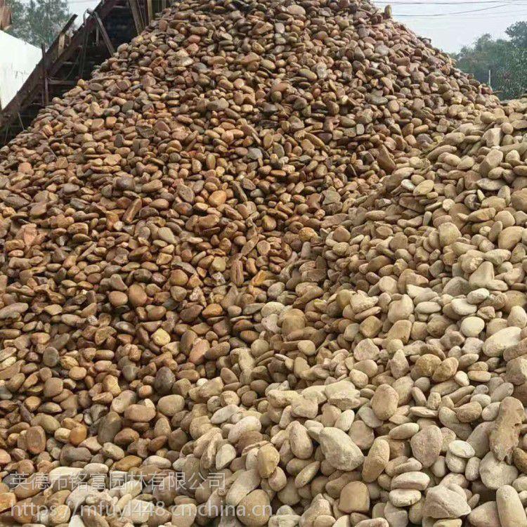 清远鹅卵石厂家 清远鹅卵石价格 英德河卵石厂家 英德河卵石价格