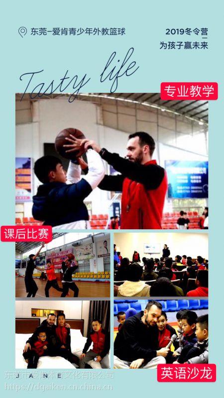 2018年-2019年东莞寒假篮球冬令营,青少年篮球训练营