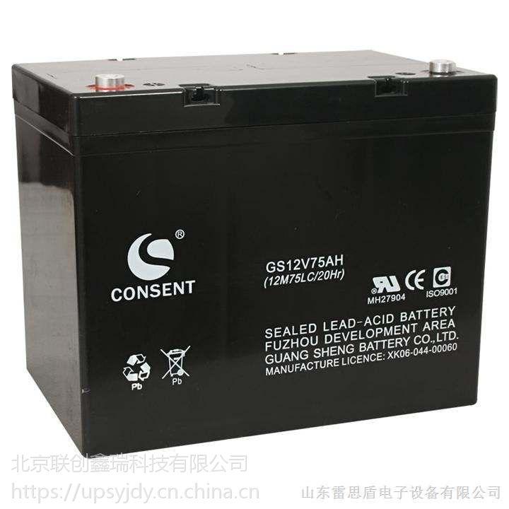 厂家直销/CONSENT光盛蓄电池技术参考