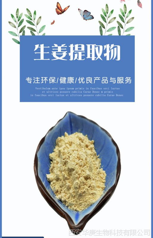 天然提取物20:1姜辣素/干姜粉生姜直销厂家提取包邮建兴菜籽油v天然图片