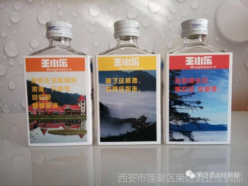 爆款王小乐白酒 单粮型青春商务小酒 45度100mL×24瓶小酒批