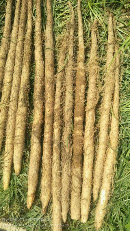 中药材专用光碳肥 生根促长
